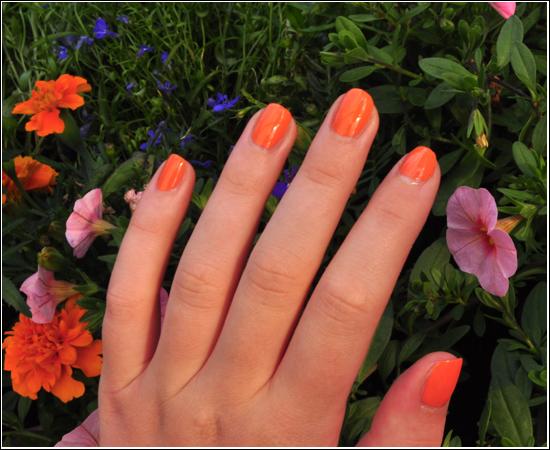 NOTD H&M Orange