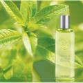 Yves Rocher Verbena perfume