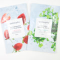Apolosophy Strawberry Souffle Mask Dead Sea Mineral Mask
