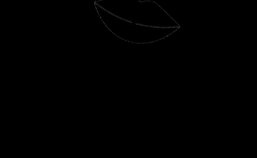 SCHIE BEAUTY ™ / BLOGLOVIN'