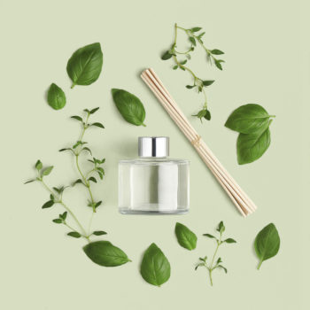 The Body Shop Moments of Nature Home Fragrance