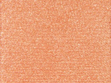H&M Apricot Eyeshadow (B)